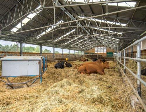 Kľúčovú úlohu začínajú aj v poľnohospodárstve čoraz viac hrať moderné technológie a inovatívne postupy